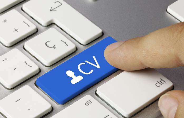 Personal Profile - CV