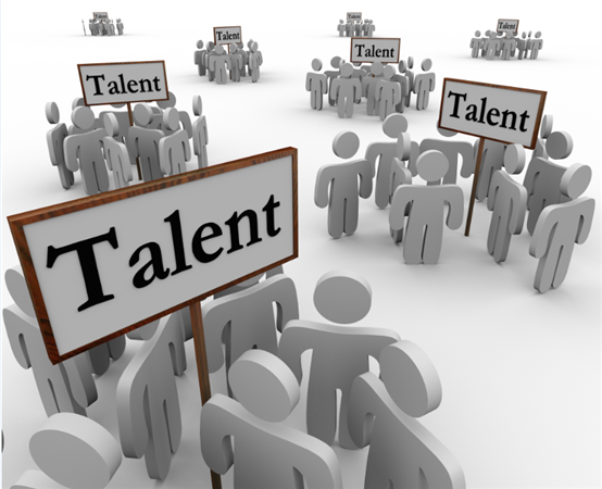 Manage and Develop Talent Pools