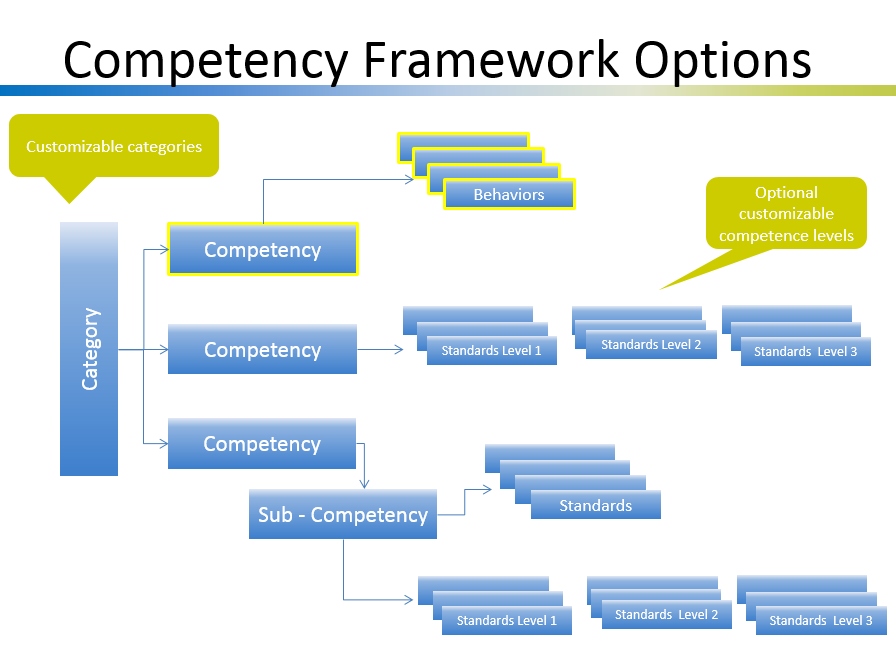Competency Management Business Case - competency model options
