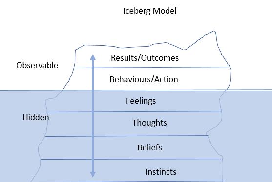 iceberg competency modfels